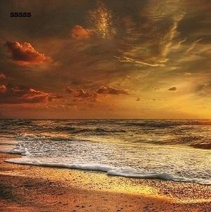 beach-goa