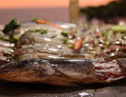 fish-kerala
