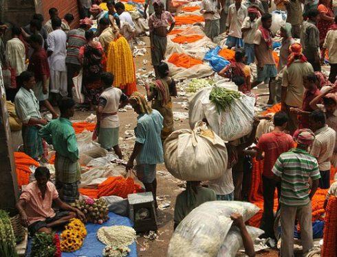 Agenzia-di-viaggi-a-Kolkata , agenzia-viaggi-a-kolkata-5545