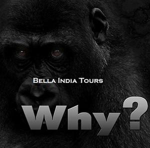 Perche-bella-india-tours-1